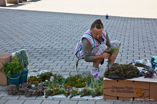 A Lithuanian woman preparing her flowers for sale on the streets of Vilnius, Lithuania.
