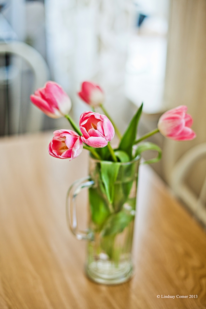 my welcome back gift to myself - tulips from one of the babushkas at Ploshchad Vosstaniya.