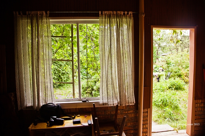 the kitchen/interior of the other dacha we looked at, but did not purchase.
