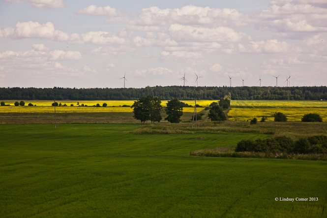 a windmill farm in Ida-Viru.