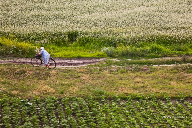 woman with her bicycle; on the train from Kiev to Bryansk.